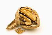 An opened walnut