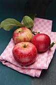 Red apples with leaves on a kitchen towel