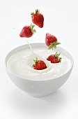 Strawberries falling into a bowl of yogurt