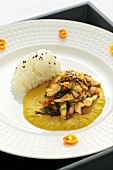 Chicken curry with steamed rice (Asia)