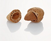 Almond, partially in the shell