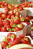 Strawberries in cardboard boxes