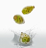 Cactus figs falling into water