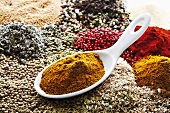 Curry powder in porcelain spoon on assorted spices