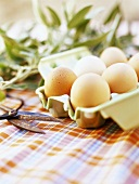 Eggs in egg box, sage in background on checked cloth