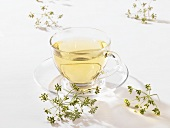 Fennel tea in a glass cup