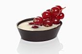 Chocolate redcurrant tart