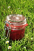 Red berry chutney in grass