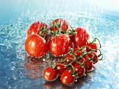 Tomatoes with water