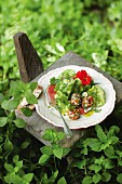 A herb salad with cheese balls and grapefruit