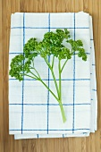 Parsley on a tea towel