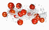 Tiger tomatoes with a water splash