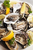 Fresh Irish oysters with lemon wedges