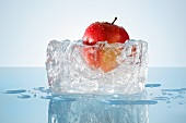 Apple in a block of ice