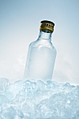 Schnapps bottle in ice