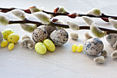Catkins with sugar eggs and quail's eggs