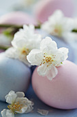 Pastel-coloured Easter eggs decorated with cherry blossoms