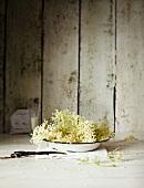 Elderflowers on a plate