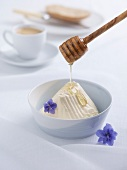 Cream cheese with honey and flowers