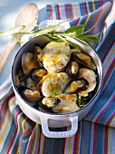 Mouclade de lotte (monk fish with mussels, France)
