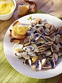 Telline mussels with aioli and toasted bread
