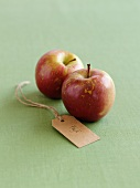 Two Fuji apples with a label