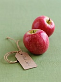 Two Pink Lady apples with a label
