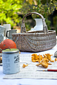 Chanterelles on newspaper in front of wicker basket on table in garden