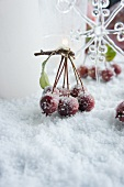 Crab apples on twig and star-shaped glass ornament in artificial snow