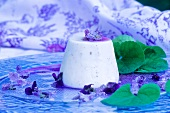 Panna cotta with violets