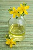 Massage oil with Hypericum