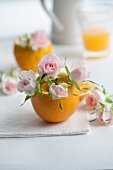 Pink roses in orange halves