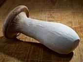 A king trumpet mushroom on a chopping board