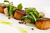 Seared Scallops Garnished with Caper Berries and Mesclun Greens