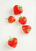 Strawberries in cream