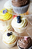 Various cupcakes (blueberry, chocolate and lemon) on a cake stand