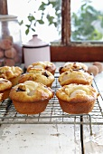 Chocolate and lychees muffins