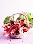 Fresh rhubarb in a basket