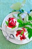 Sour cream mousse with raspberry sauce and raspberries