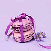 Macaroons tied with a ribbon with lavender flowers