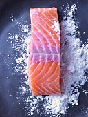 Salmon fillet being dusted with flour