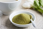 Matcha tea powder in a small dish
