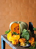 Still life featuring edible and ornamental squash