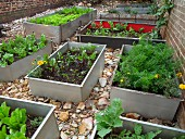 Flower beds and vegetable beds in old metal troughs
