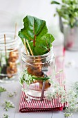 Chicken skewer with chard, in a jar with cow parsley tied round it