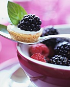 A mini berry tartlet on a spoon