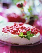 Chilled cheesecake with redcurrants