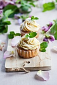 Peppermint cupcakes