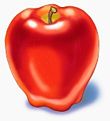 A red apple (illustration)