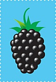 A blackberry against a blue background (illustration)
